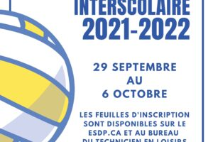 Affiche inscriptions volleyball